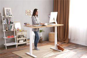 Flexispot Electric Height Adjustable Workstation