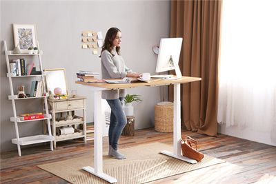Flexispot Electric Height Adjustable Workstation