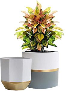 The Largest Selection of Indoor Plant Pots!