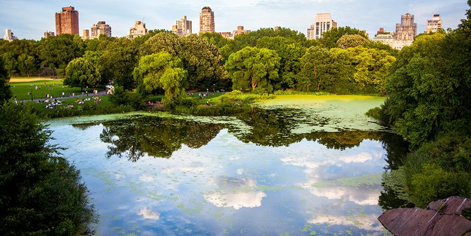 central-park-ny.jpg